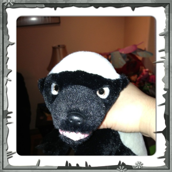 My brother-in-law surprised me with the Honey Badger this past summer. The Honey Badger was going on my list!