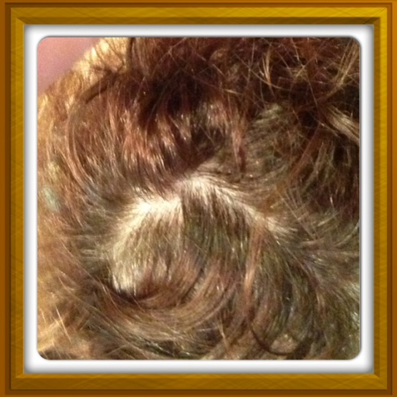 There are my roots. As you can see, those shimmery things are the gray hairs that need to be annihilated.